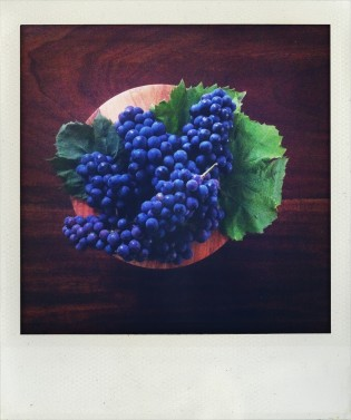 Coronation grapes